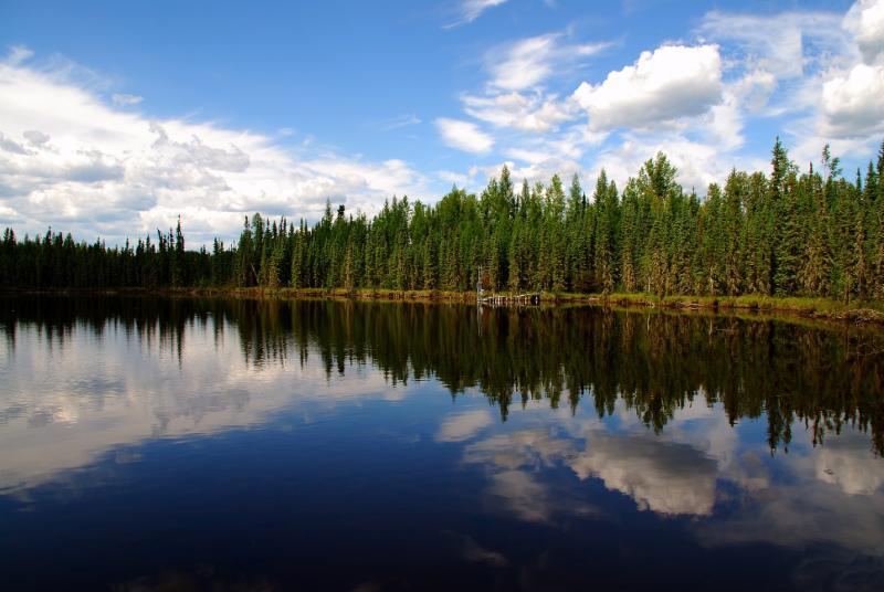 Image of wetlands in northern Alberta by Gord McKenna _2010_