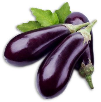 Haberger Eggplant