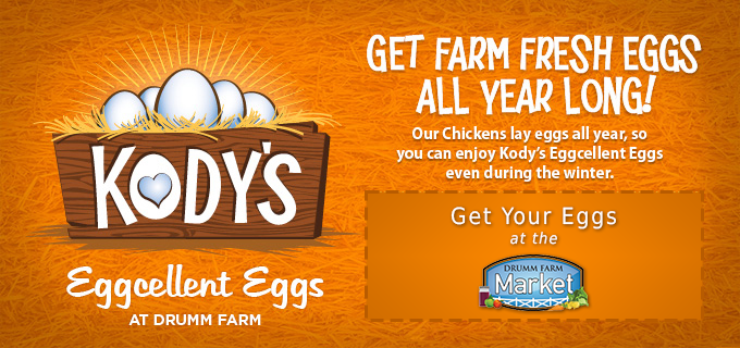 Our chickens lay eggs all year_ so you can enjoy Kody_s Eggcellent Eggs even during the winter. Get you eggs at the Drumm Farm Market.
