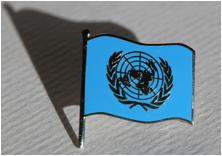 UNGO Flag