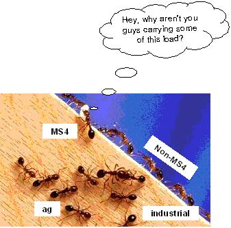 ants go marching image