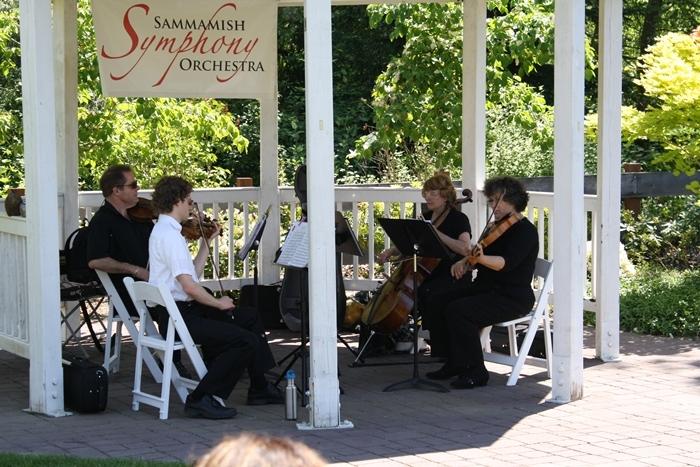 Sammamish Symphony Quartet