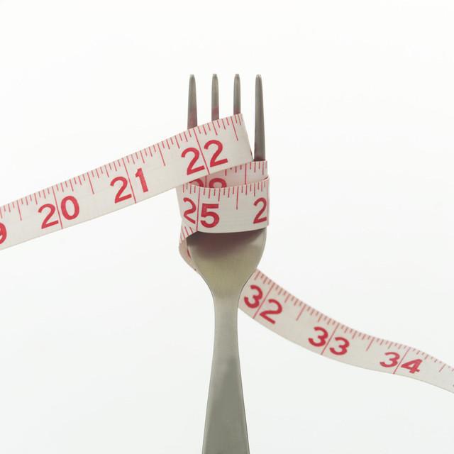 Weight Watchers Fork