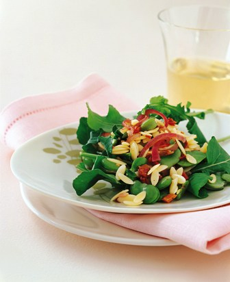 Fava Beans and Orzo Salad - Jesse Cool