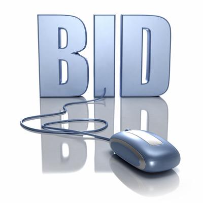 bid_mouse