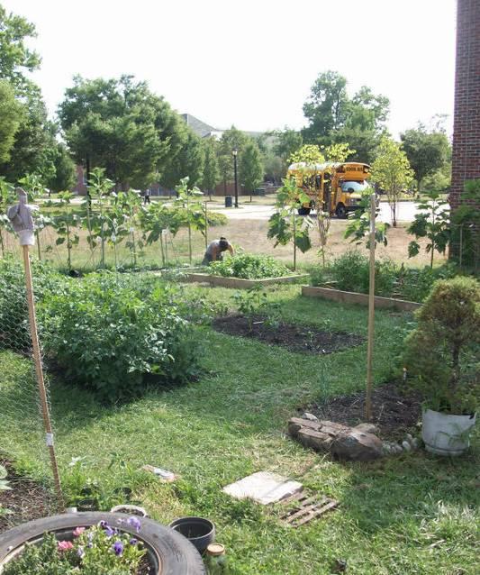 CSI Garden