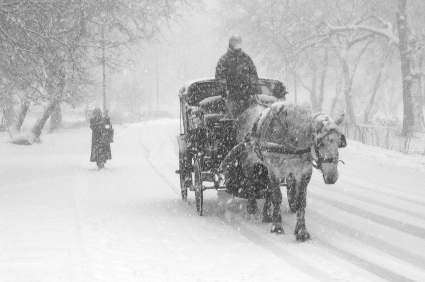 snow carriage