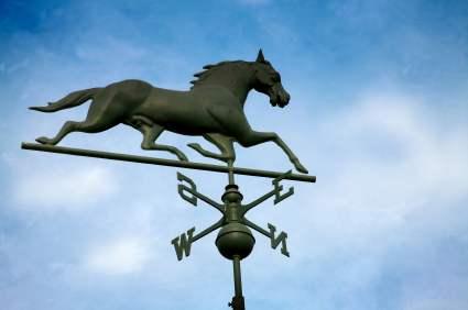 horsewindvane