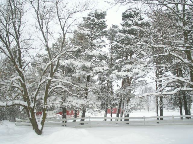 BAB snow 2010