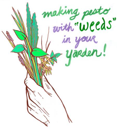 wild herb pesto hand drawing