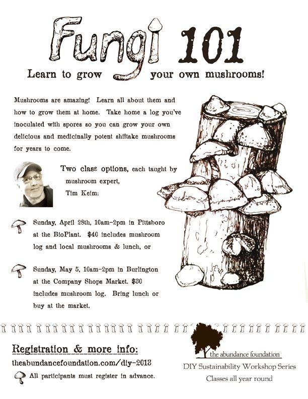 fungi101keim
