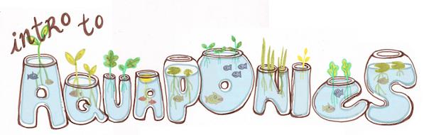 aquaponics drawing banner