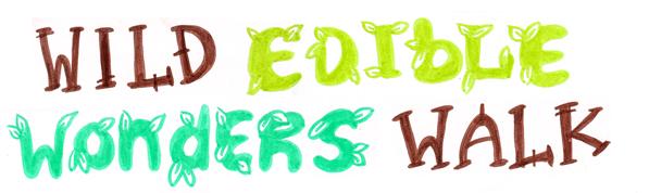 wild herb pesto drawing banner