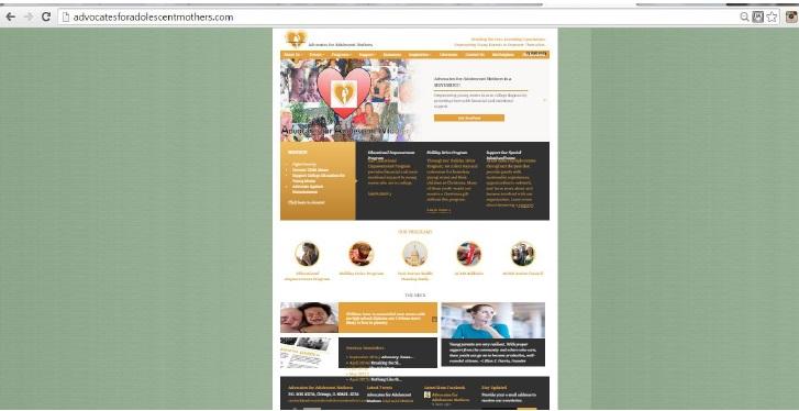 Image of AFAM website