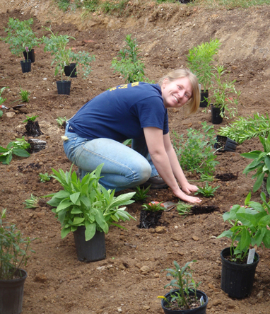 Planting_Garden