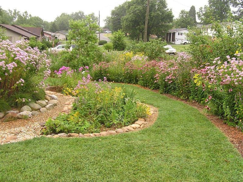 rain garden_front yard