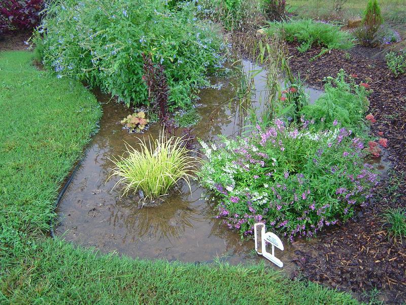 Smolinski Rain Garden