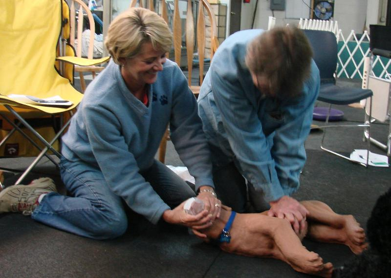 Canine CPR class