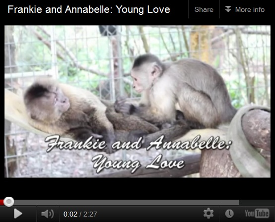 Frankie and Annabelle