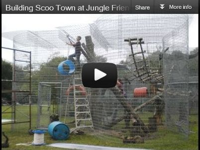Video Building Scoo Town