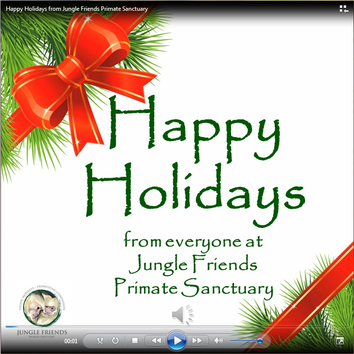 Happy Holidays 2013 video