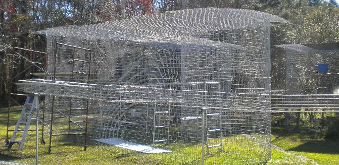 Habitat Under Construction