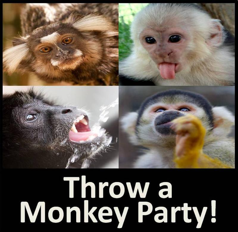 Throw a monkey party