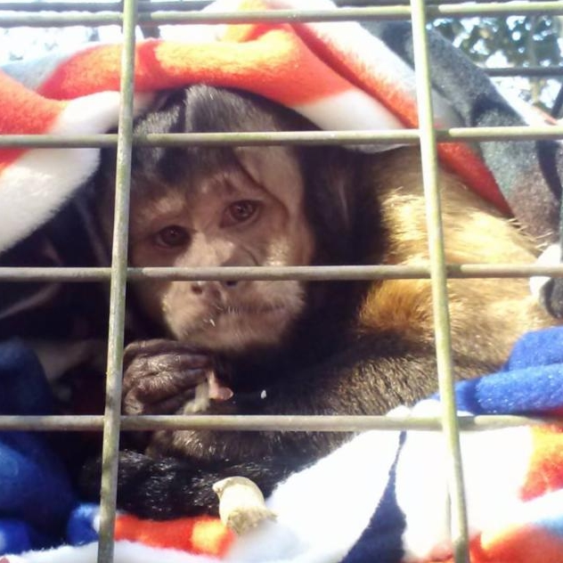 Sammy loves his blankets