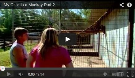 My Child is a Monkey video thumbnail