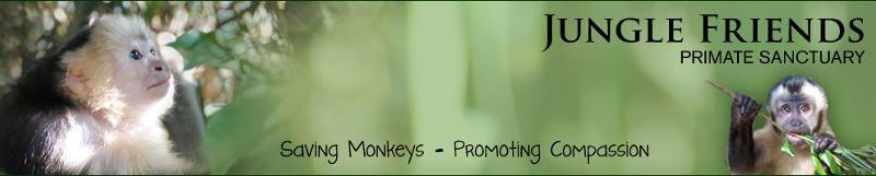 Jungle Friends Primate Sanctuary