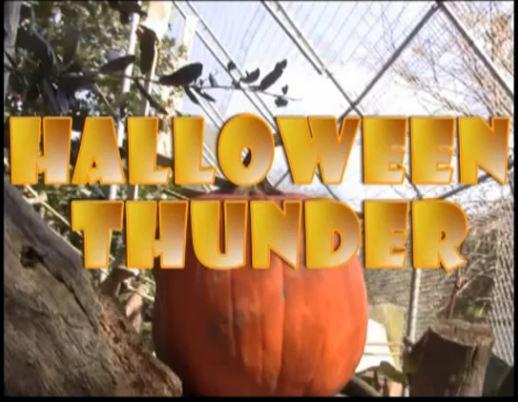 Halloween Thunder Trailer Video