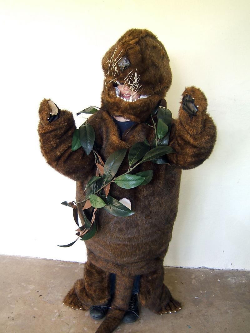 Sea Otter Costume