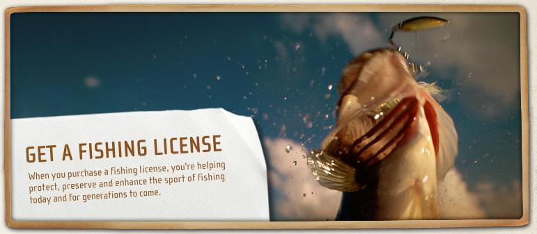 Fishing News From Lake Havasu City