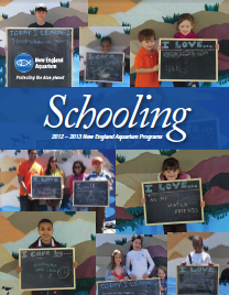 schooling 2012-13 cover