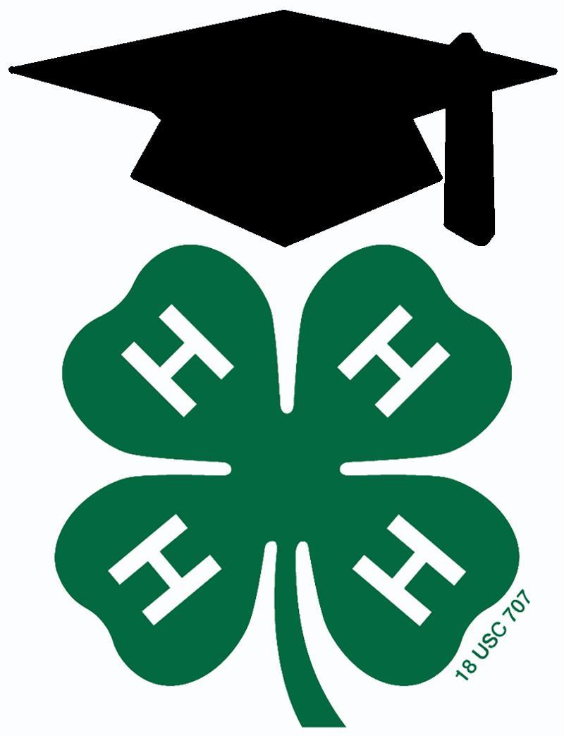 Collegiate 4-H Logo