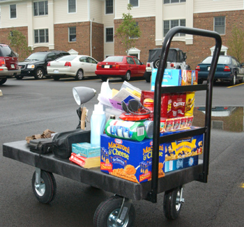 Move-in cart