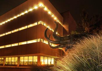 Helmke Library at night