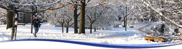 Winter Header Snow