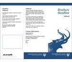 IPFW brochure template image