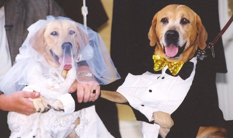 Bride Grace