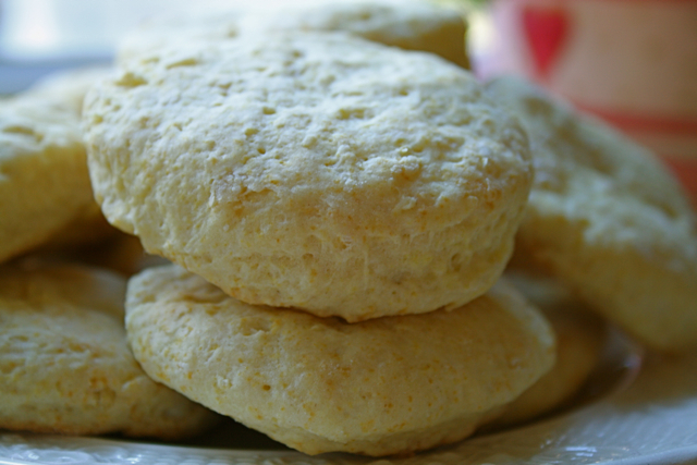 Mimosa Biscuit
