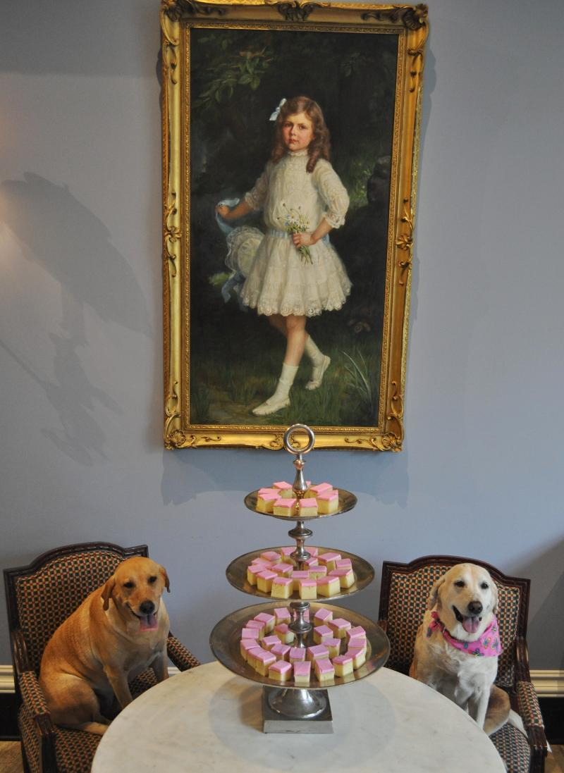 Grace and Sugar with cake