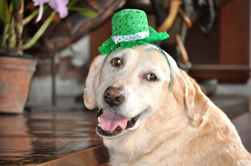 Grace in green hat