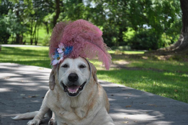 Princess Grace in Spring hat
