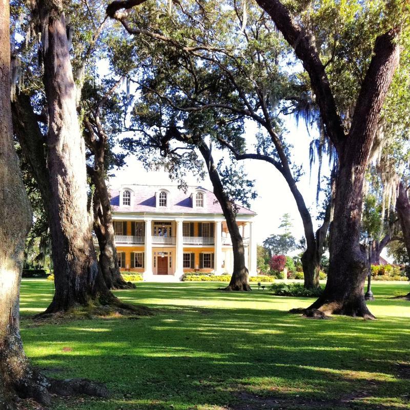 Houmas House and trees