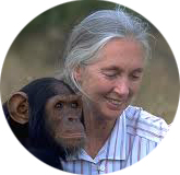 Jane Goodall,