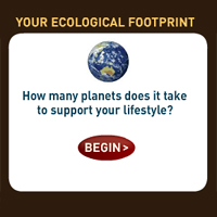 Earth Day Footprint Calculator