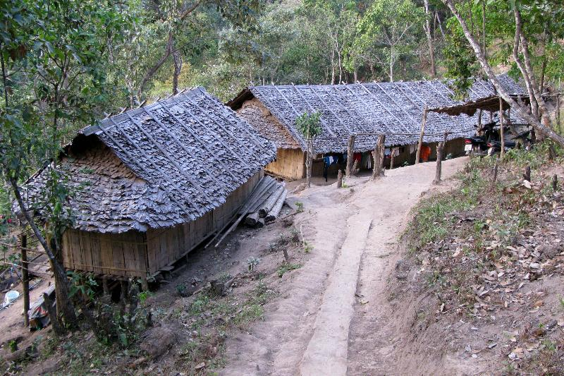 Thatched leaf roofs of village homes