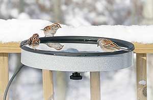 Erva Heated Bird Bath