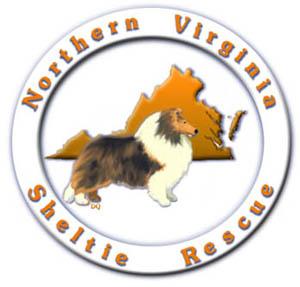 NVSR logo